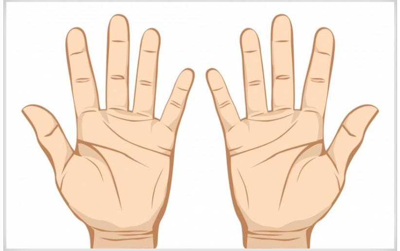Pogledajte u dlan: Lijeva šaka otkriva budućnost, desna prošlost