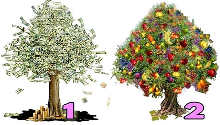 Izaberi JEDNO od ova 2 stabla i saznaj kakvo BLAGOSTANJE I SREĆA te uskoro očekuje…