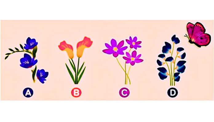 Na koji CVIJET će leptir sletjeti? Odaberi JEDAN i saznaj OVO o svom LJUBAVNOM ŽIVOTU!