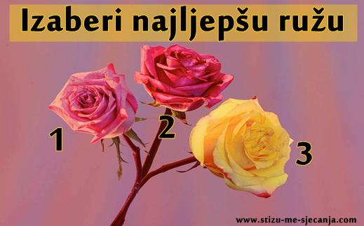 RUŽA otkriva tvoje NAJLEPŠE ŽENSKE OSOBINE! Izaberi JEDNU i saznaj ZAŠTO TE DRUGI VOLE