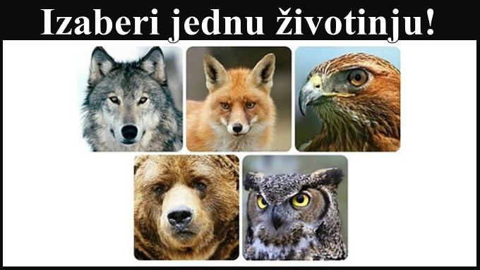 Koju od OVIH 5 životinja najviše VOLITE? Odgovor će otkriti SVE O VAMA!