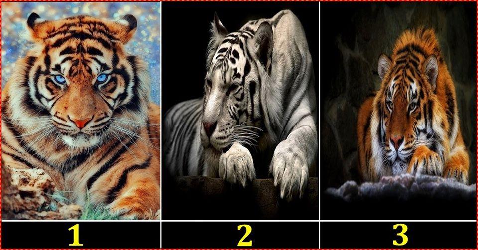 Izaberi sliku i saznaj: KO ce vas RAZOCARATI i  ZBOG CEGA?
