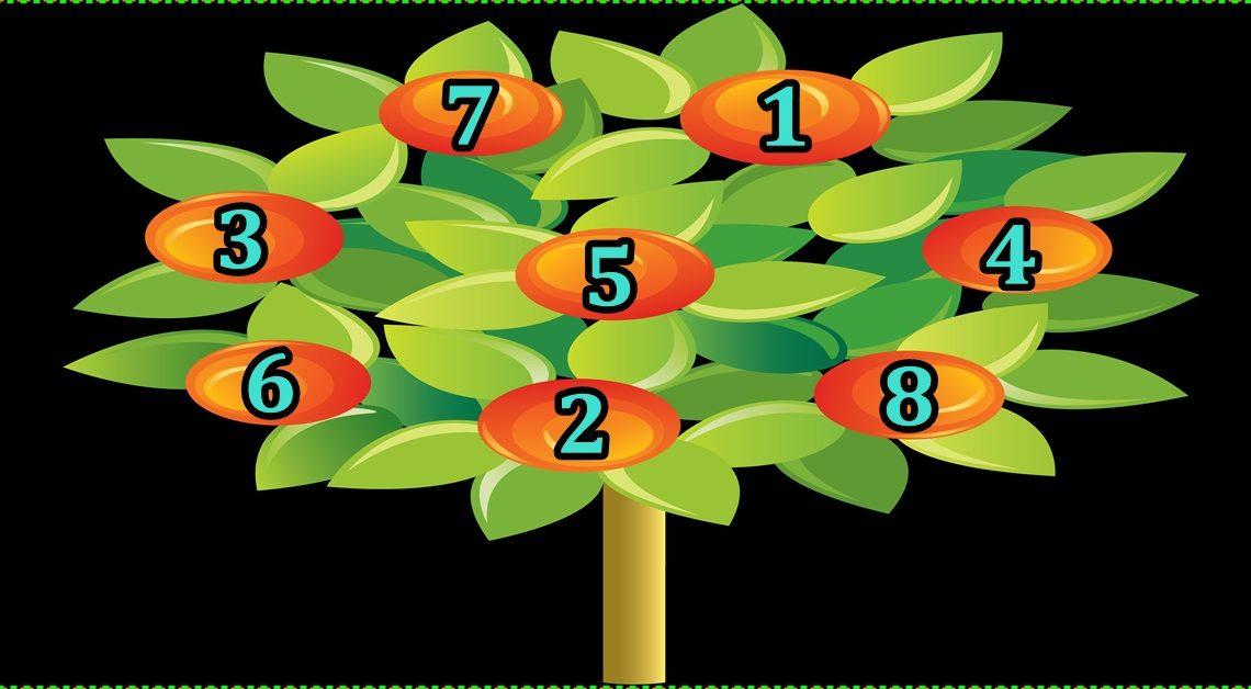 DRVO ŽELJA: Zamisli ŽELJU,izaberi broj i saznaj hoće li se OSTVARITI!