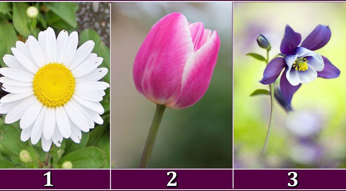 VJENCANJE , RASTANAK ili NOVA LJUBAV ?! -Cvijet koji te najvise privlaci OTKRIVA sta te ocekuje u MJESECU MAJU!